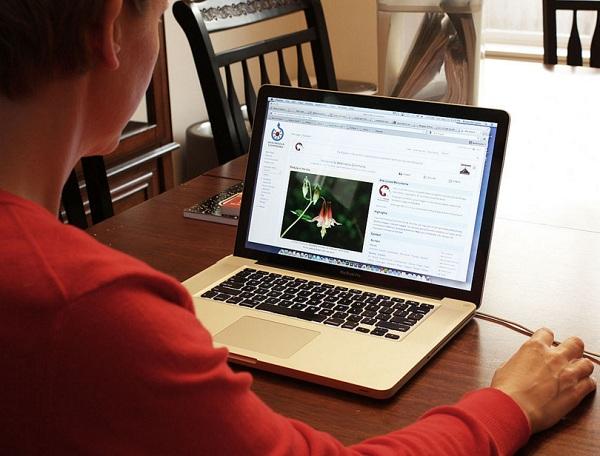 Alternatif Pekerjaan di Internet