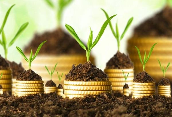 Bisnis Bimbel Dan Investasi